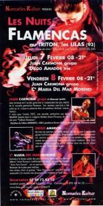 nuits-flamencas-2